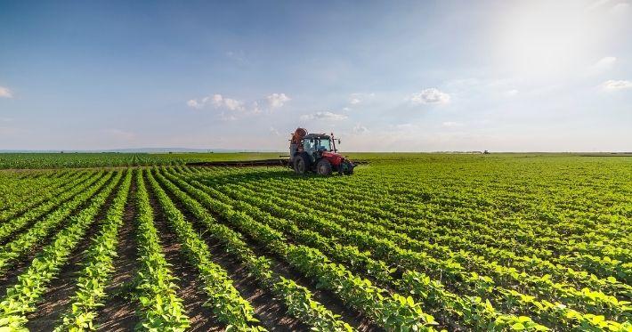 Agronegócio: um setor em constante crescimento